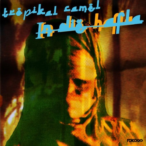 Rocky B aka The Tropikal Camel