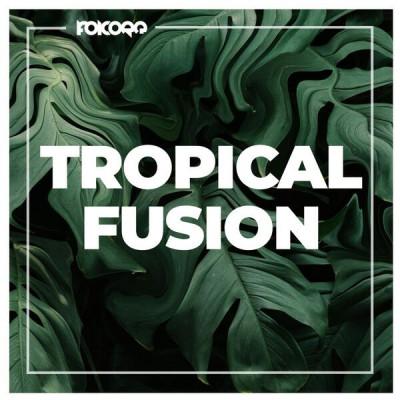Tropical Fusion